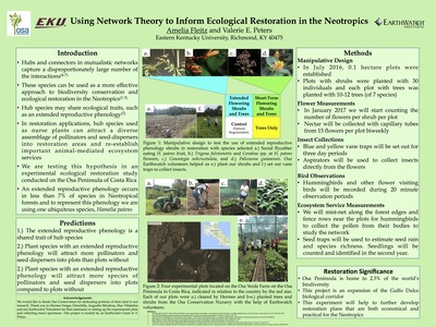 Using NetworkTheory to Inform Ecological Restoration in the Tropics