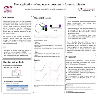 The application of molecular beacons in forensic science