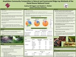 Amphibian Community Composition in Natural and Constructed Ridge-top Wetlands of the Daniel Boone National Forest