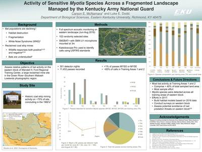 Activity of Sensitive Myotis Species Across a Fragmented Landscape Managed by the Kentucky Army National Guard