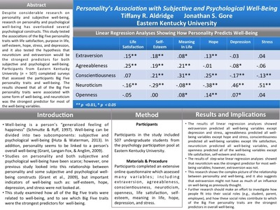 Personality's Association with Subjective and Psychological Well-Being