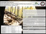 Sustainable Cave Tourism: Visitor Perceptions of Cave Ecology & White Nose Syndrome