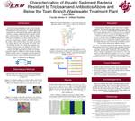 Characterization of Aquatic Sediment Bacteria Resistant to Triclosan and Antibiotics Above and Below the Town Branch Wastewater Treatment Plant
