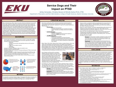 Service Dogs and Their Impact on PTSD