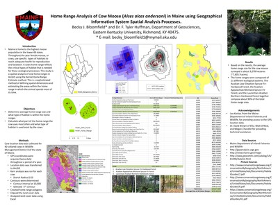 Home Range Analysis of Cow Moose (Alces alces andersoni) in Maine using Geographical Information System Spatial Analysis Processes.