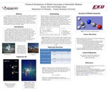 Chemical Simulations of Methyl Isocyanate in Interstellar Medium by Kelsey Wilmaleen Abner